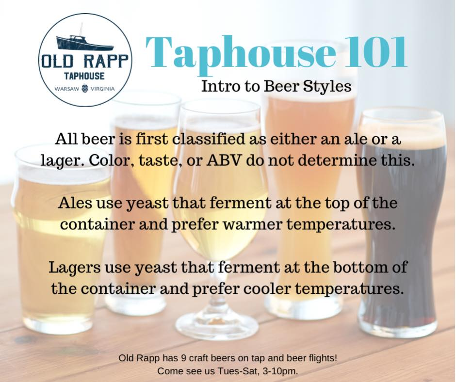 Taphouse 101: Intro to Beer Styles begins with the basics, ale vs lager. Stay…